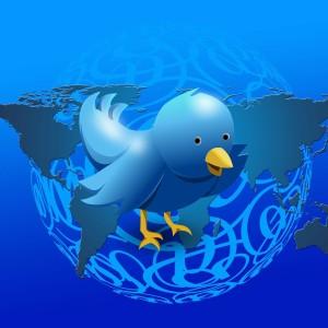 fake followers image