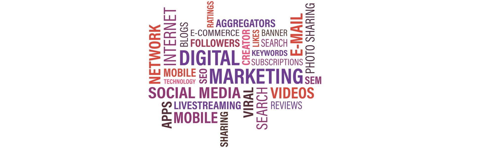header-3-digital-marketing-services-essex