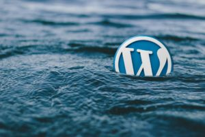 wordpress in the ocean